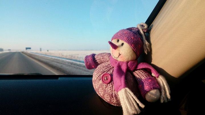 В Омской области после недели морозов открыли дорогу в Казахстан