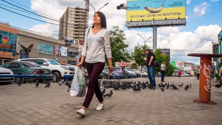 Теперь заживём: в Новосибирской области выросла средняя зарплата