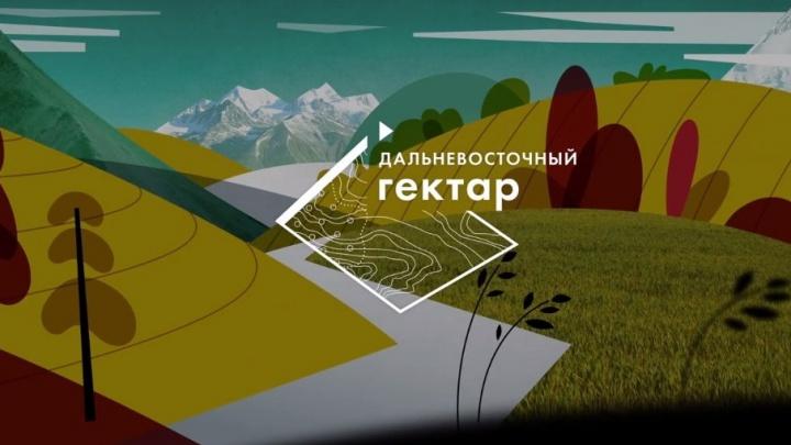 Даешь Дальний Восток: бизнесмены из Москвы превратят заветный гектар в оазис на реалити-шоу «Лентача»