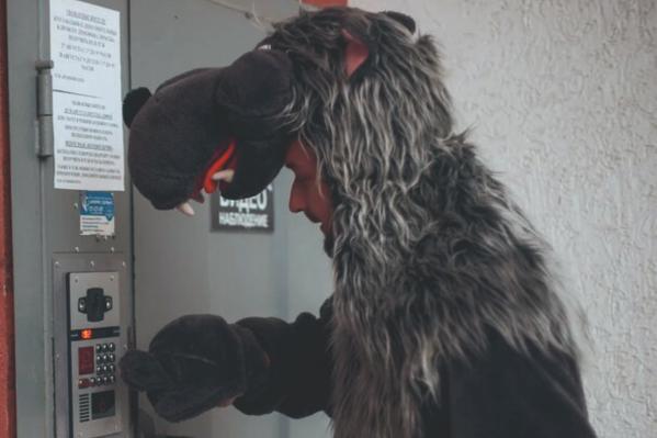 Серый Волк пытался проникнуть в квартиры, где дети были одни дома