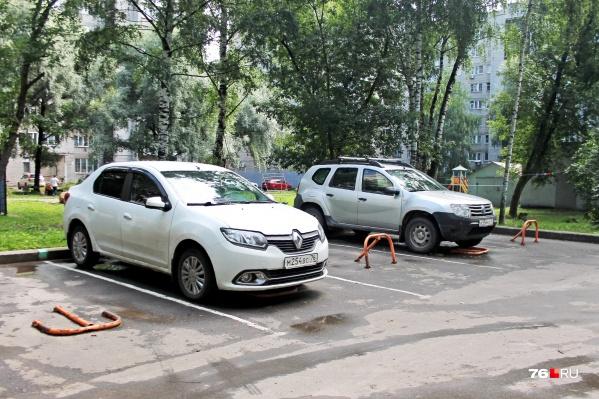 Под новые парковки в городе рубят деревья