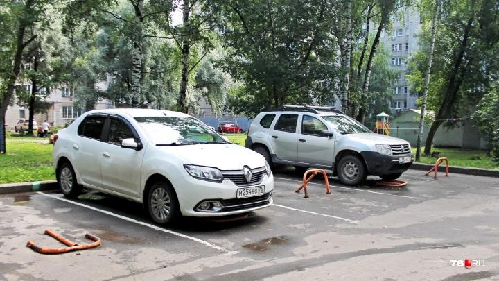 В Ярославле массово вырубают деревья под парковки