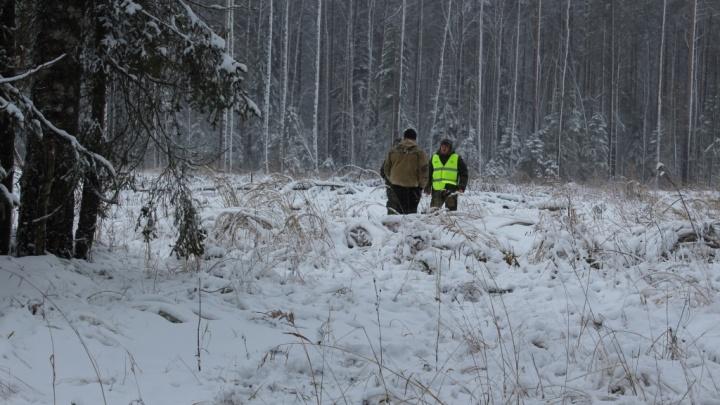 Пятьсот тысяч и шесть лет тюрьмы: кого в Ярославской области будут наказывать новогодние патрульные