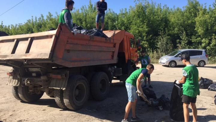 Семеро новосибирцев за 8 часов убрали свалку около Заельцовского парка