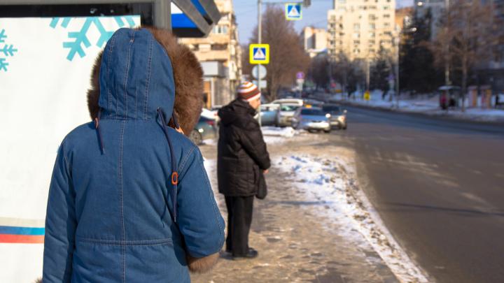 Мэрия анонсировала возможность возврата автобусов 1а и 50с