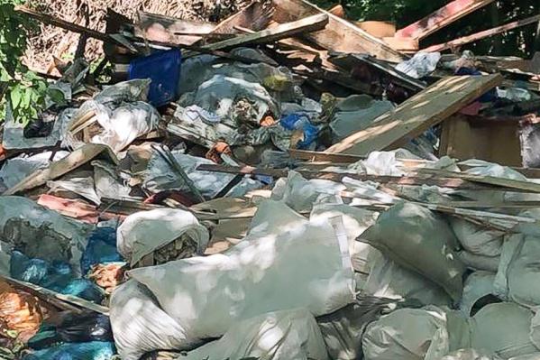 Парк на Левобережной местные жители часто используют для свалки мусора