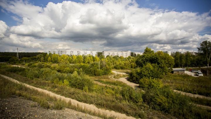 Госкомпания отдаёт под застройку пойму Нижней Ельцовки — местные жители борются с этим 7 лет