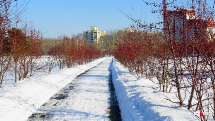 Тюменцы просят мэра вернуть Заречному парку «отрезанный» кусок