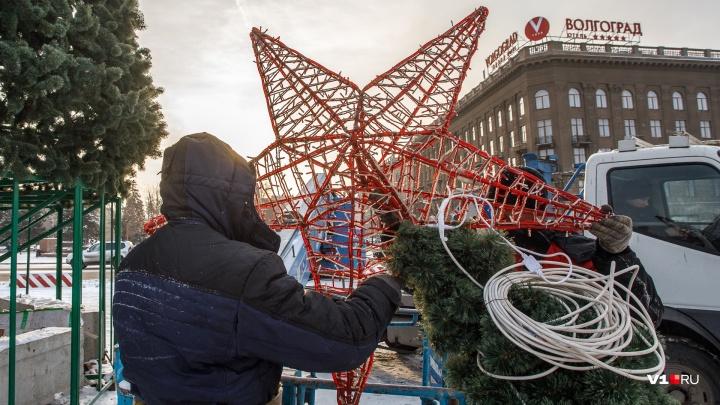 «Будем работать до ночи»: в центре Волгограда срочно собирают к Новому году главную елку