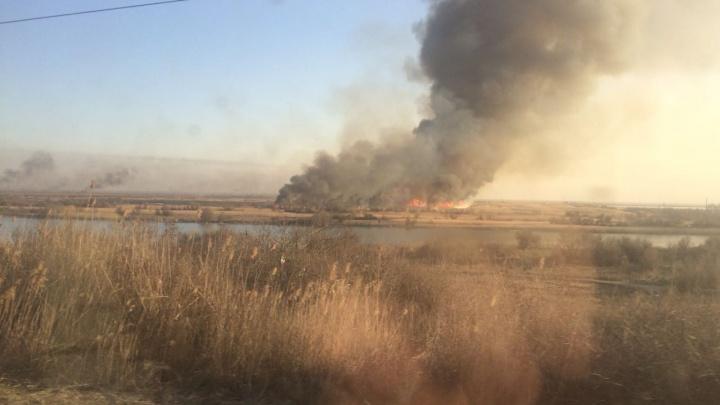 Дончан предупредили о высокой угрозе пожаров на выходных