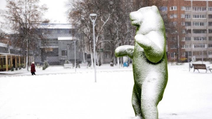 Зима предъявляет свои права: на этой неделе в Ярославле похолодает ещё сильнее