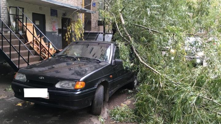 МЧС предупреждало: семь фотографий, как ураган потрепал нервы, но Уфа устояла
