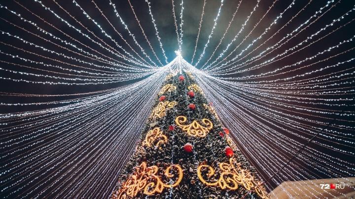 10 фото с открытия главной елки Тюмени: игры с казаками, гирлянды и праздничный фейерверк