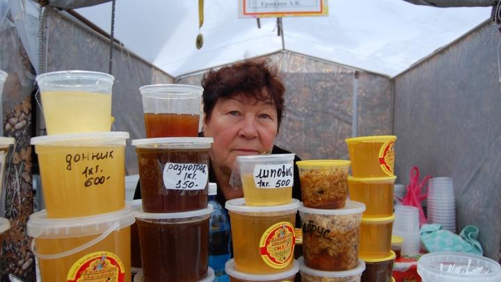 «Очень много фальсификата»: пчеловоды предсказали рост продаж поддельного мёда из-за гибели пчёл