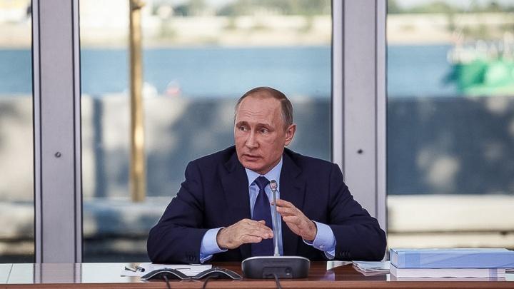 «Всего 50 тысяч — и президент на связи»: волгоградец продает визитку Владимира Путина