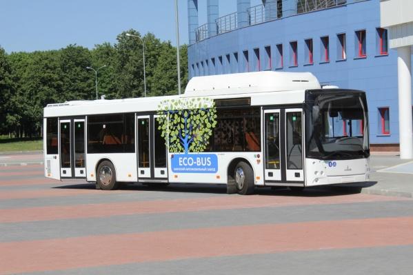 В конце июля по итогам аукциона стало известно, что в Челябинск поставят такие автобусы МАЗ-203
