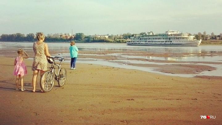 Удар по экологии: чем Ярославской области грозит обмеление Волги