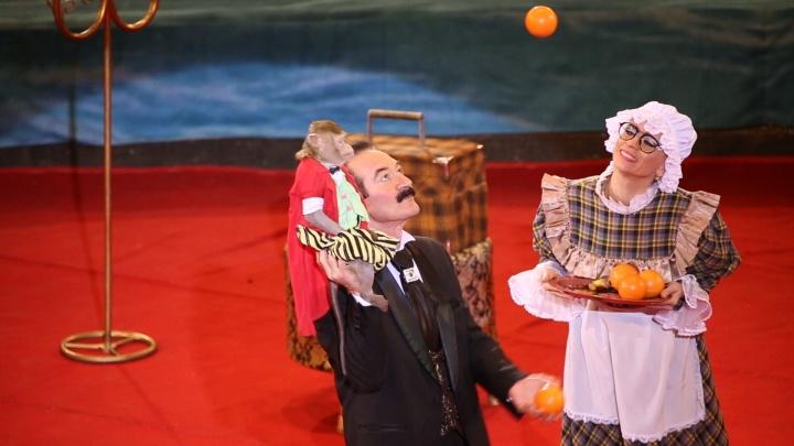 Трюки под куполом и летающие медведи: в Челябинск приехал «Цирк легендарных династий»