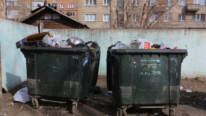 Депутаты просят Госдуму спасти красноярцев от ежемесячных платежей за вывоз мусора