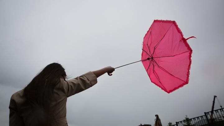 Новосибирцы получили сообщения от МЧС об опасном ветре до 23 м/с