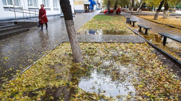 Сезон осадков: Волгоград до конца недели накроет затяжными дождями