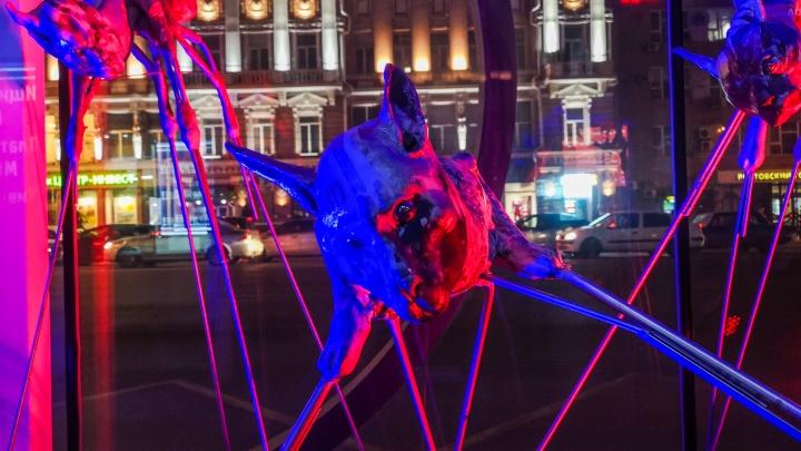 Выставку современного искусства организовали на автобусных остановках в центре Ростова