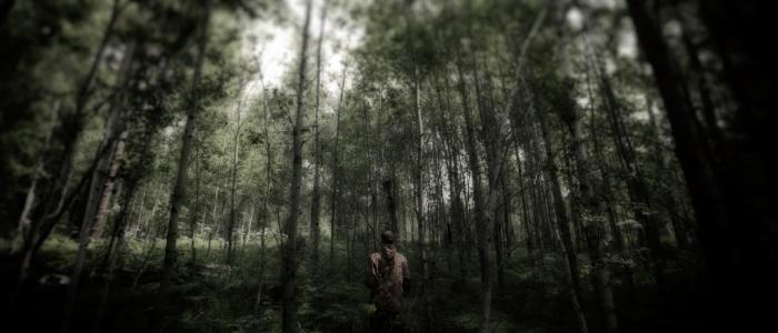 Девочку нашли в лесу