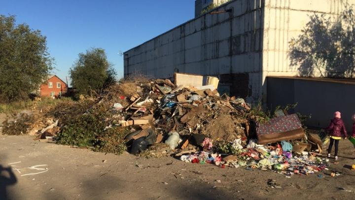 От нашего дома — вашему: жителей Советского района Волгограда задушили мусором многоэтажек