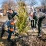 Зазеленеет: в Магнитогорске высадят 10 000 деревьев