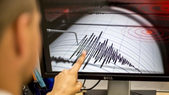 В Новосибирской области произошло землетрясение