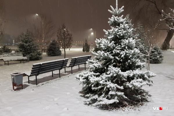 Полноценная зима пришла в Волгоград перед выходом на работу