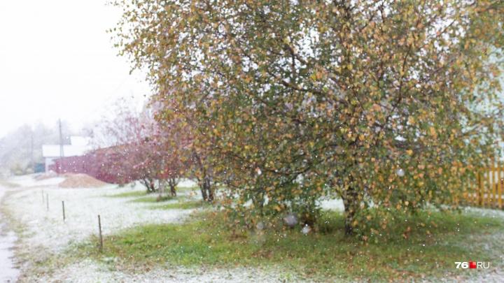 Порывистый ветер и снег: в центре России резко испортится погода