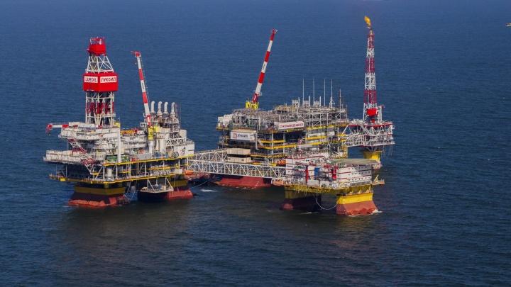 «Причин для снижения цен на бензин нет»: всего за сутки стоимость нефти рухнула на 8 процентов