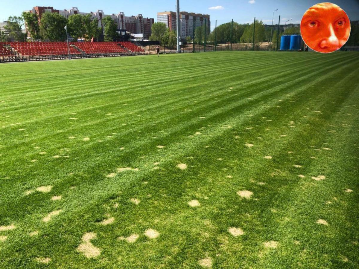 93fe2b0687284d16e715e7296a43612f05c37bc8_1200 Тренировочное поле для иностранных команд в Нижнем полысело - Zercalo.org