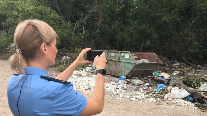 В Самаре прокуратура пытается обязать власти убрать мусор в Промышленном районе