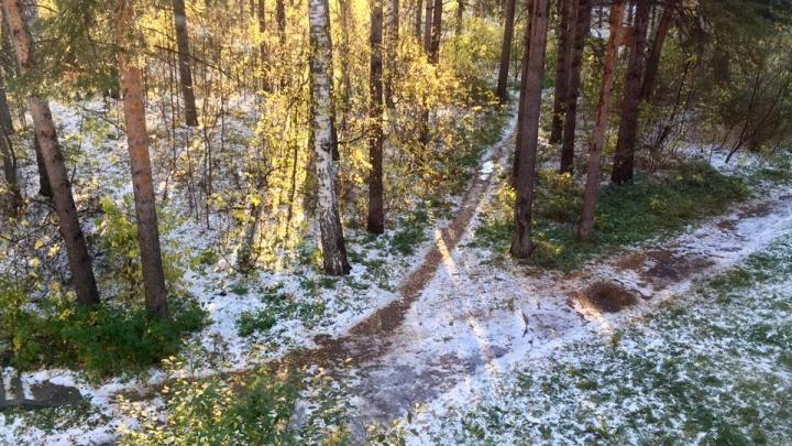 Первый снег выпал в Советском районе Новосибирска (обновлено)