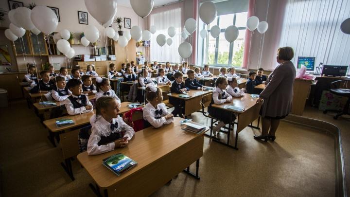Новосибирцы признались, что благодарны школьным учителям за свою профессию