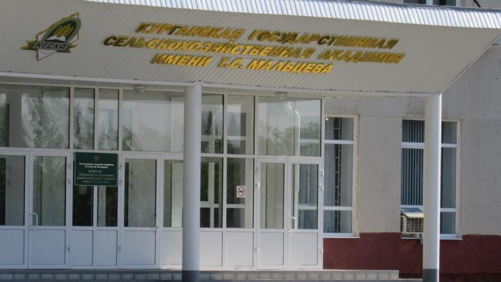 Экс-бухгалтер Курганской сельхозакадемии получила срок за присвоение денег вуза