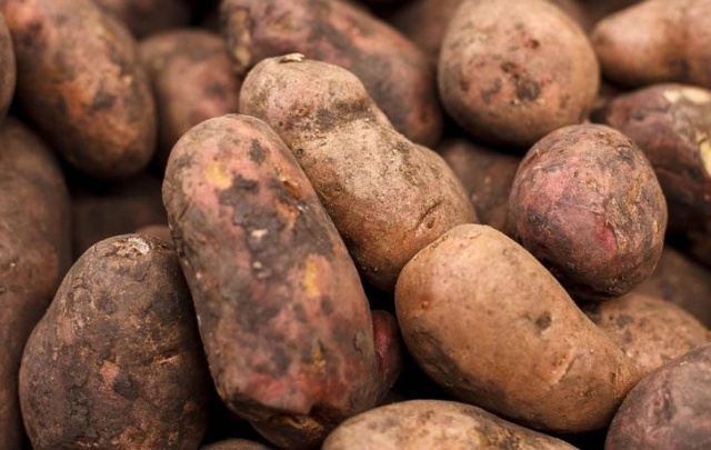 На границе Курганской области задержали 140 тонн картофеля без документов