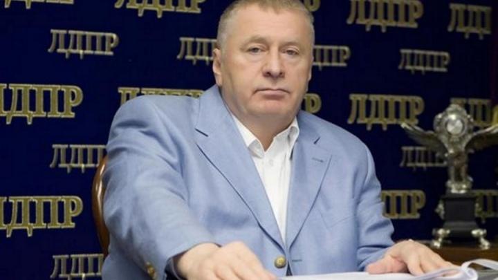 Фигуру картонного Жириновского украли из здания городского совета Красноярска