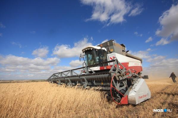 Новосибирские сельхозпроизводители получат компенсацию за дорогой бензин
