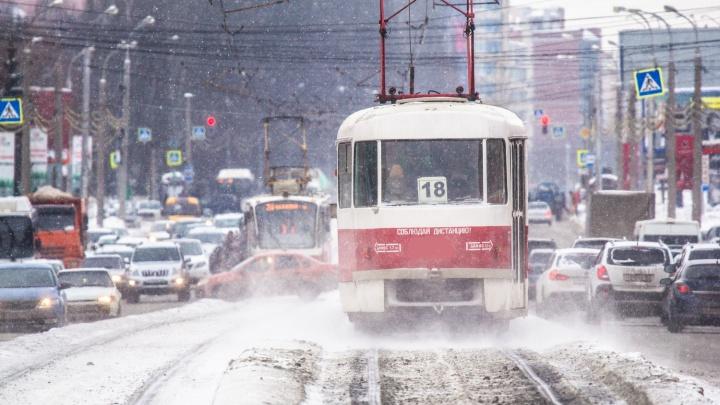 Требуют банкротства: на трамвайно-троллейбусное управление подали в суд