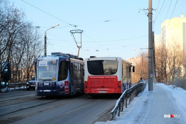 Вероника Куликова считает, что отсутствие знаков может привести к катастрофе