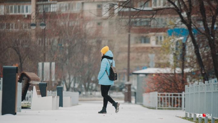 Снегопады и небольшое потепление обещают тюменцам синоптики на следующей неделе