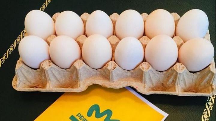 Дошутился: губернатору Куйвашеву прислали упаковку из 12 яиц, которую он придумал накануне