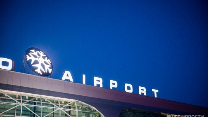 В Толмачёво вынужденно сел летевший из Москвы самолёт (обновлено)