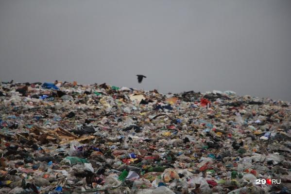 Отходы мусоросжигания будут вывозить на существующие полигоны