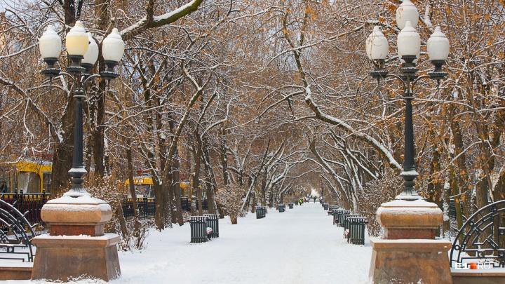 Первая рабочая неделя года в Екатеринбурге будет теплой, но без солнца