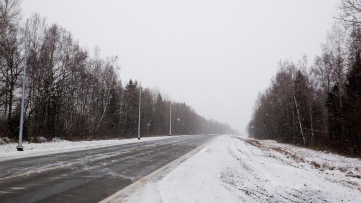 Полиция разыскивает авто, насмерть сбившее женщину на трассе в Ярославской области