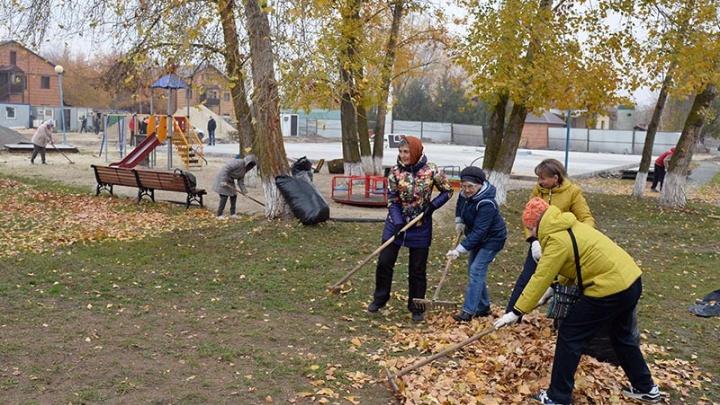 Ростовская АЭС: молодые атомщики и ветераны атомной станции провели экологический субботник